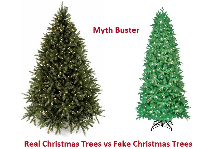 real christmas tree vs fake christmas trees