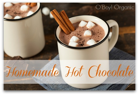 Gourmet Hot Chocolate Milk with Cinnamon and Marshmallows