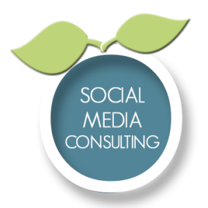 Social-Media-Consulting