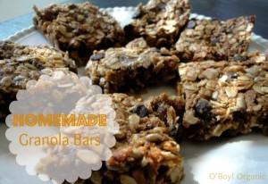 Homemade Granola Bars with label