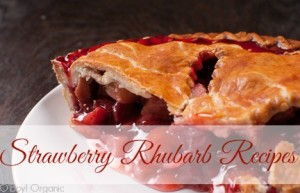 Berries and rhuharb pie crust cut