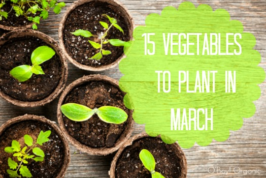 15 Vegetables to plant in march