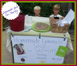 Lemonade Stand for Charity