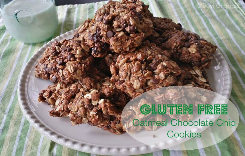 Gluten Free Oatmeal Chocolate Chip Cookie Recipe