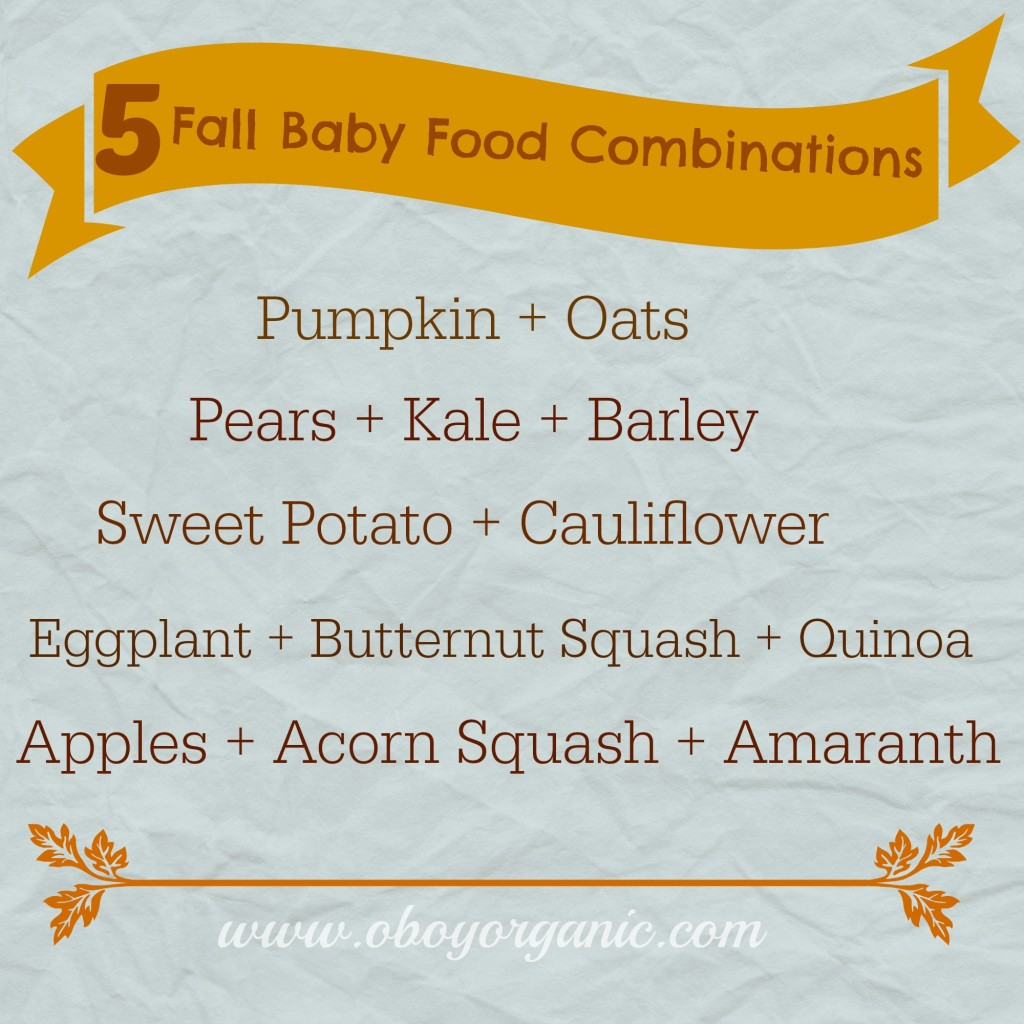 5 fall baby food combinations
