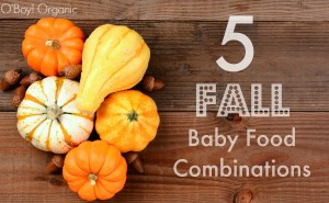 5 fall baby food combinations logo