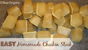 homemade chicken stock logo