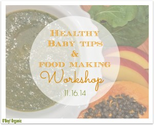 baby food making workshop logo