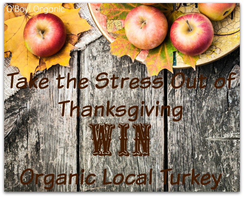 Thanksgiving Stress and Giveaway