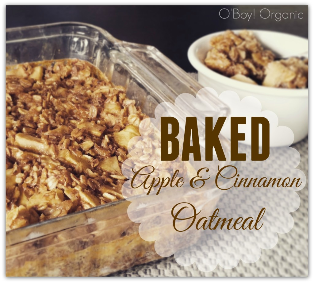 Baked Apple and Cinnamon Oatmeal Logo