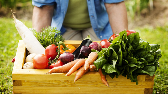 Organics Live Grocery Delivery Service & Franchising Opportunity