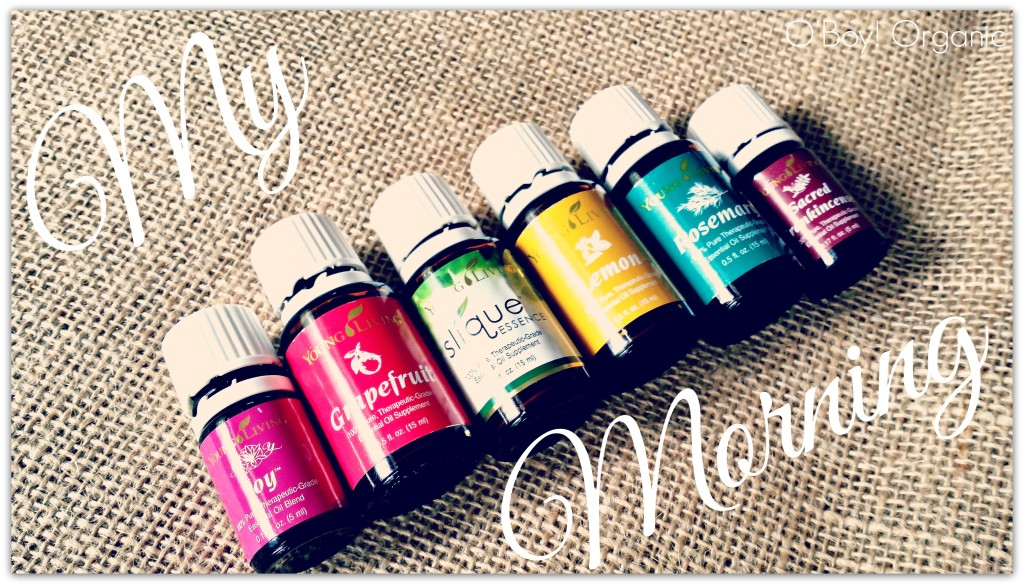 YL Morning Oils