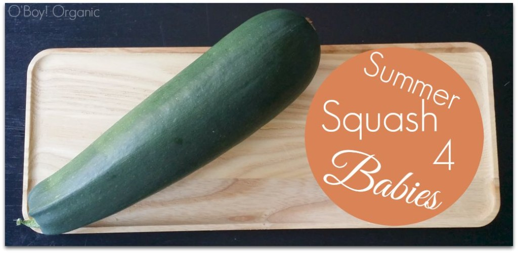 Summer Squash for babies