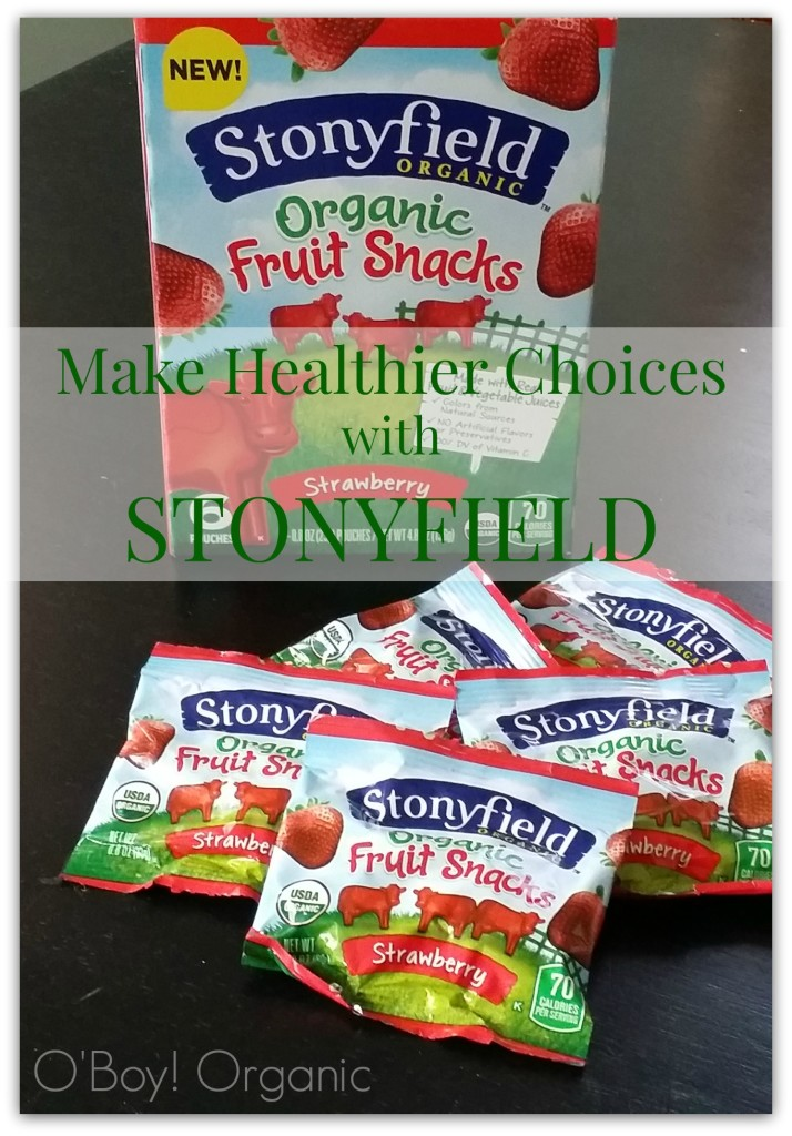 Stonyfield Fruit Snack Review