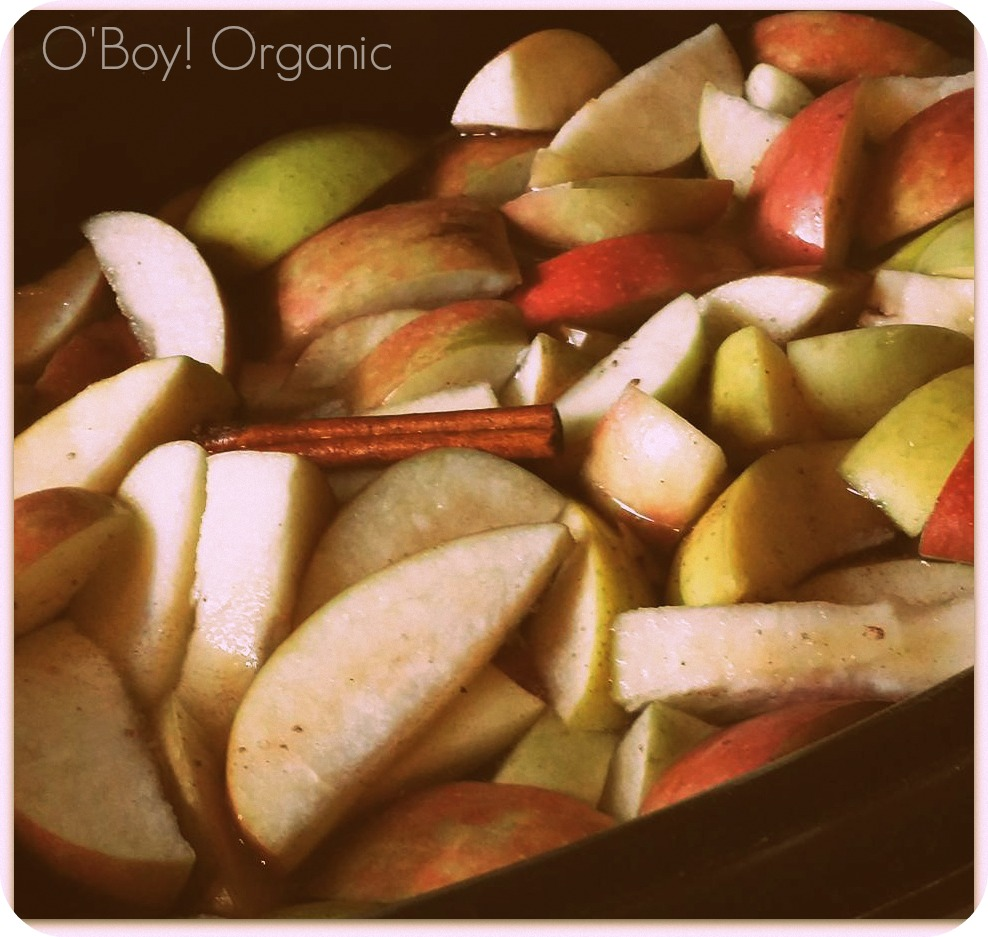 apple cider slow cooker