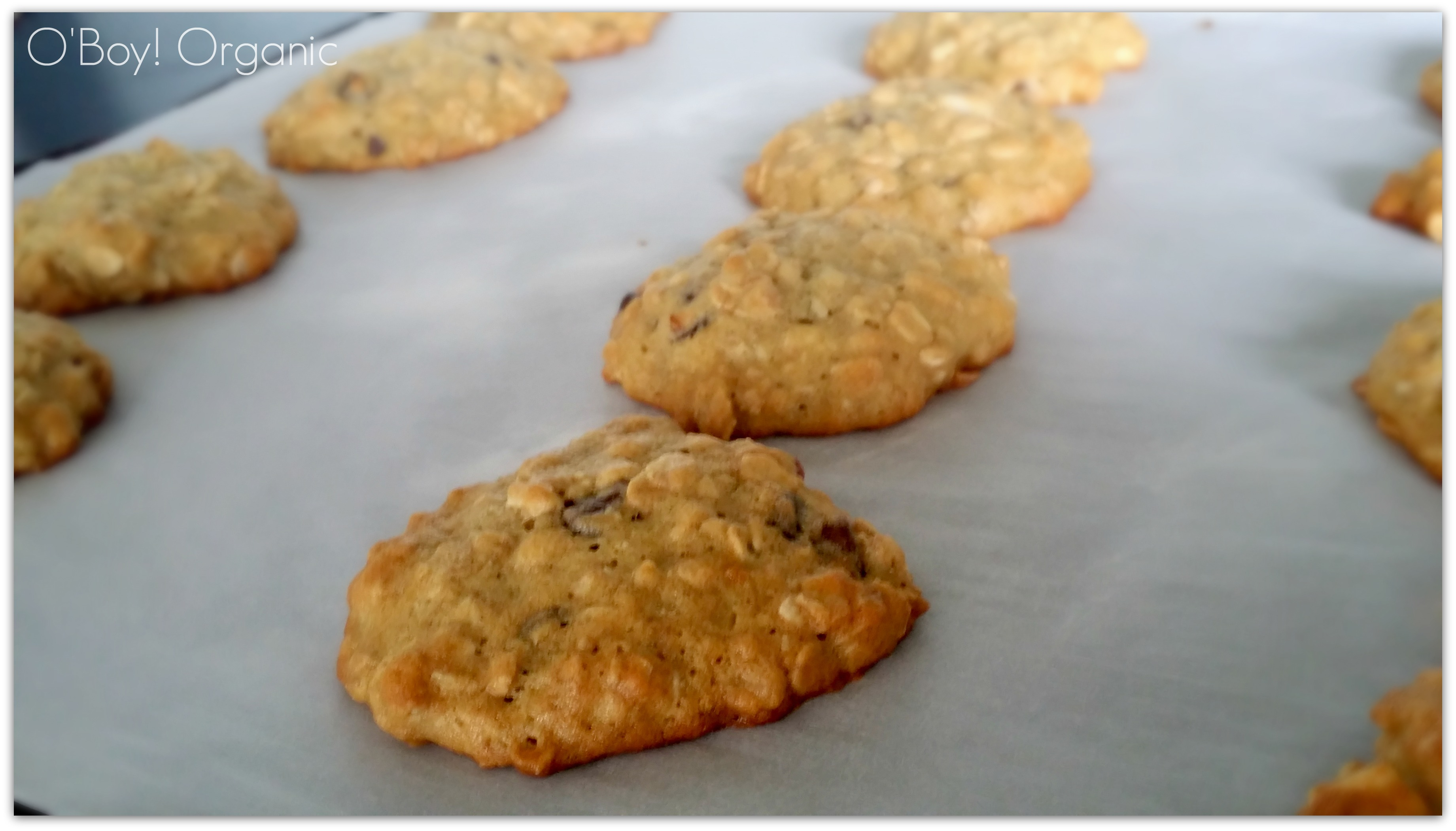 loaded oatmeal cookies fresh out of oven