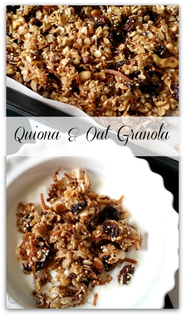 Granola Quiona and Oat