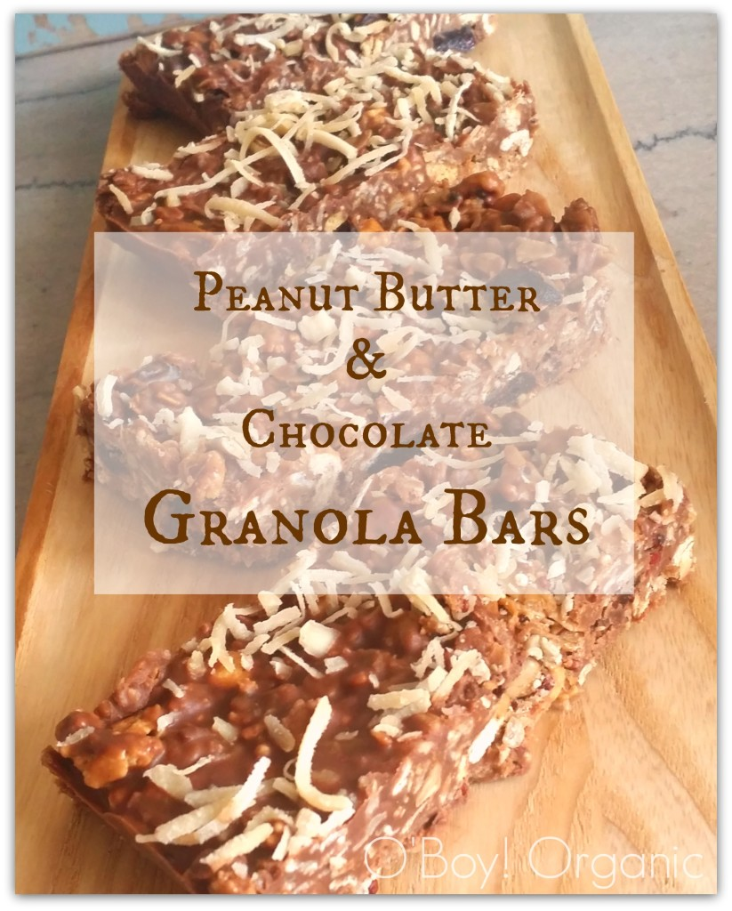 No Bake Peanut Butter and Chocolate Granola Bars