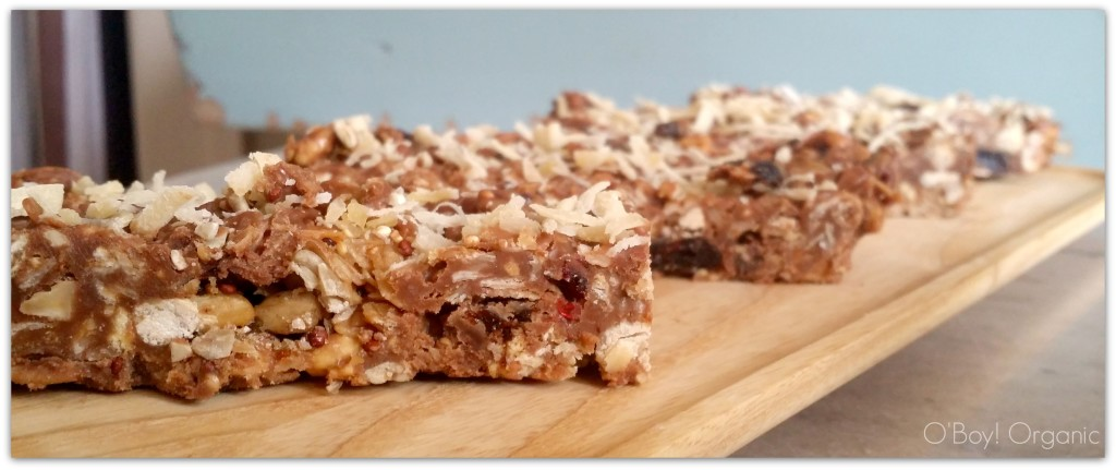 homemade peanut butter chocolate granola bars