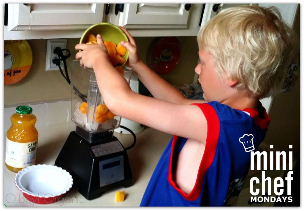 real fruit healthy slushie making