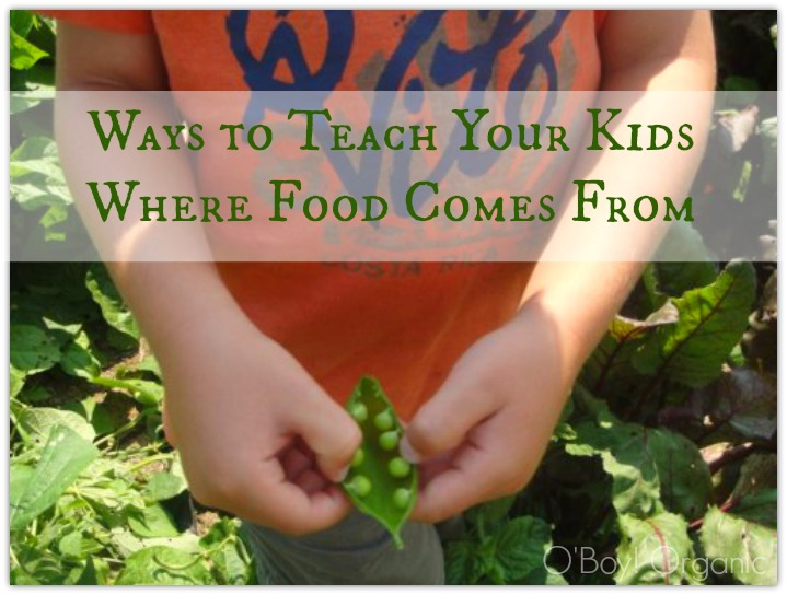 ways to teach kids where food comes from