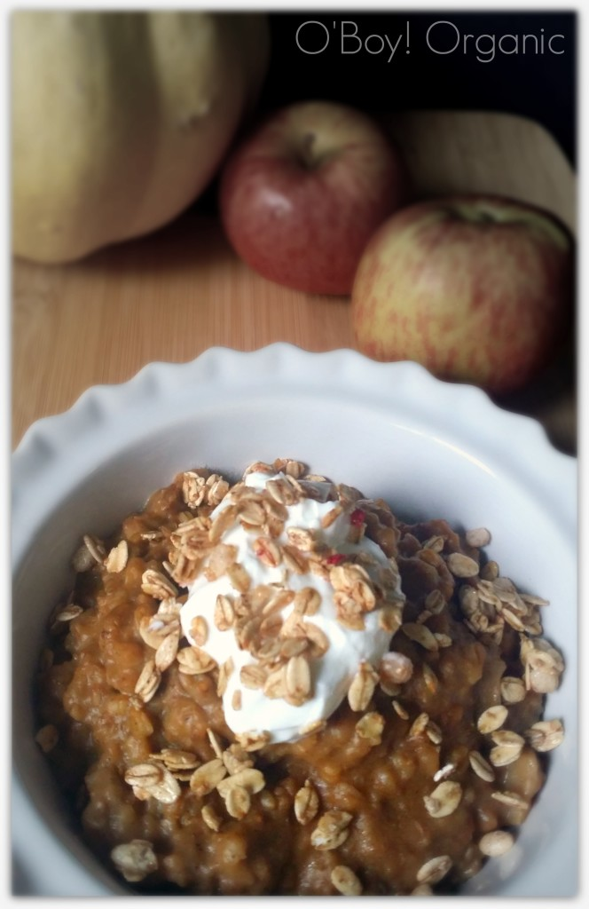 overnight-slow-cooker-oatmeal