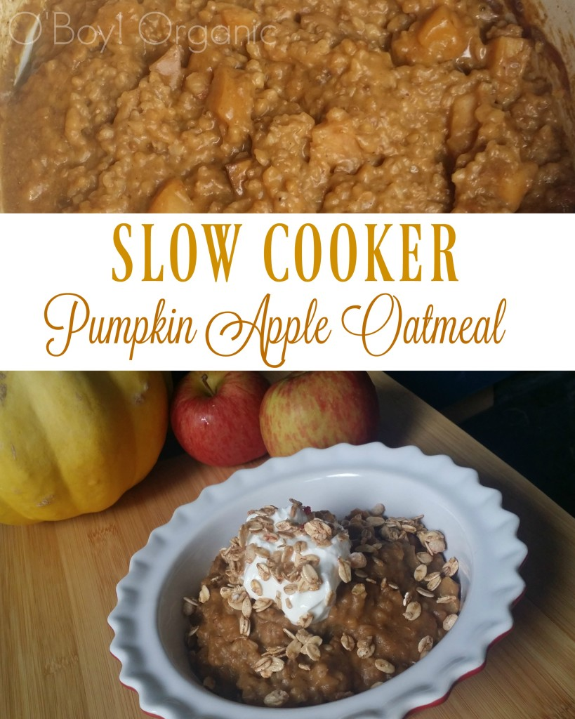slow-cooker-overnight-oatmeal