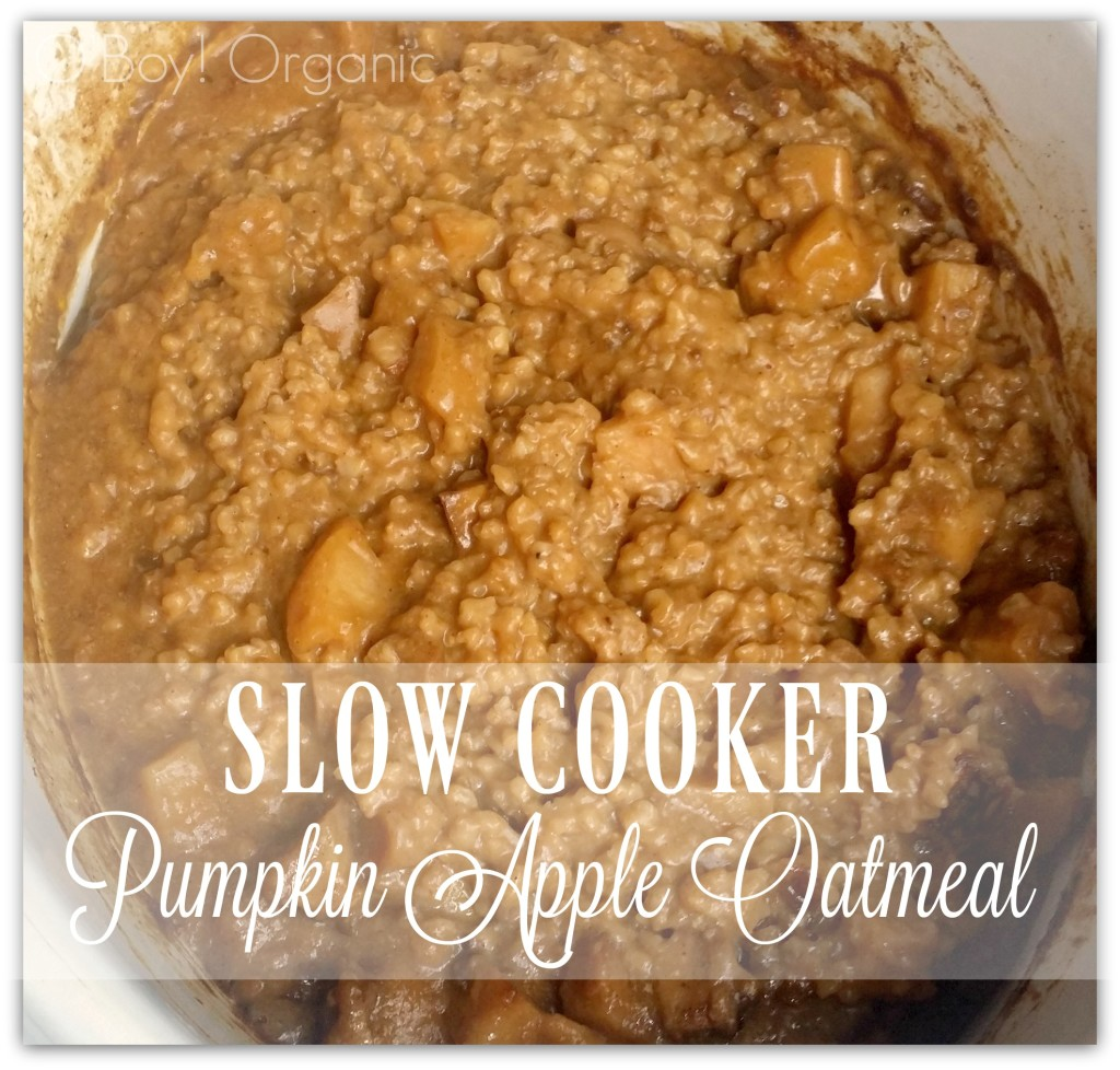 slow-cooker-pumpkin-apple-overnight-oatmeal