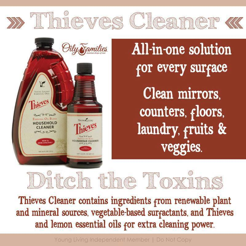 thieves-cleaner