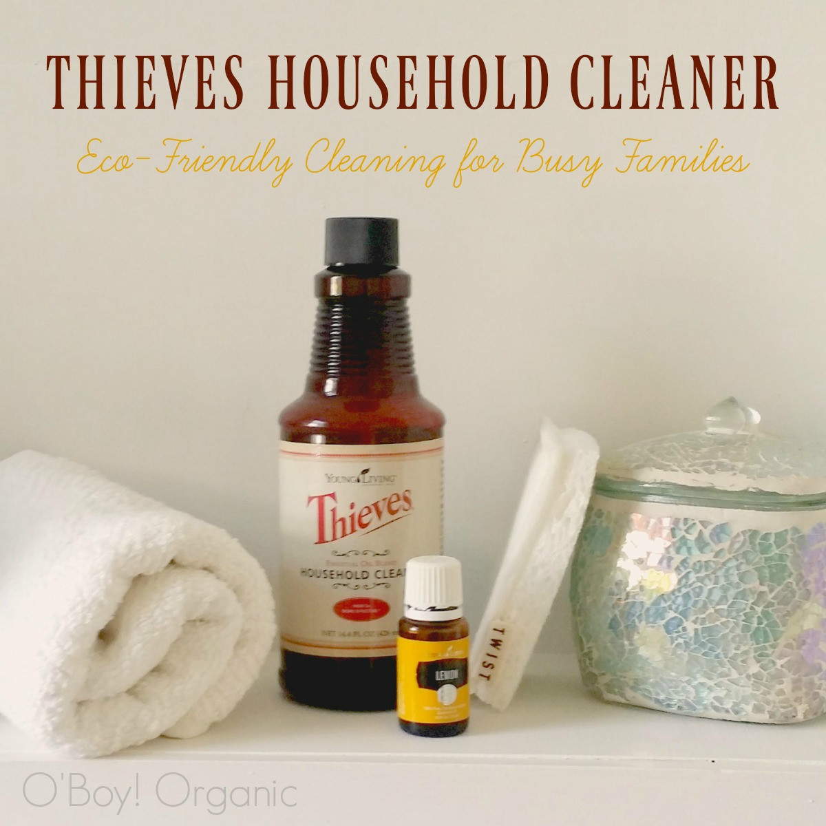 10 Ways to Use Thieves Household Cleaner Everyday