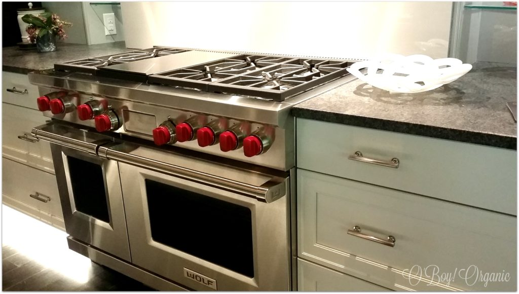 Designer Home Kitchen Stove